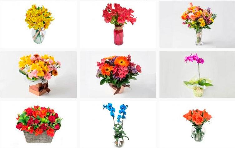 Flores com cores vivas