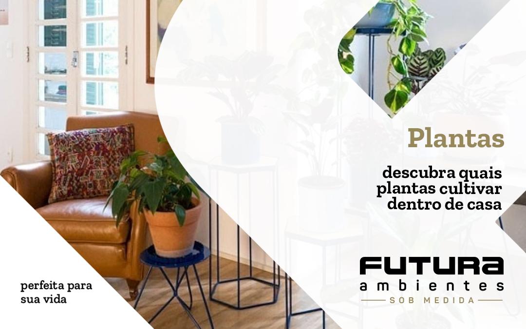 Quais plantas posso cultivar dentro de casa?